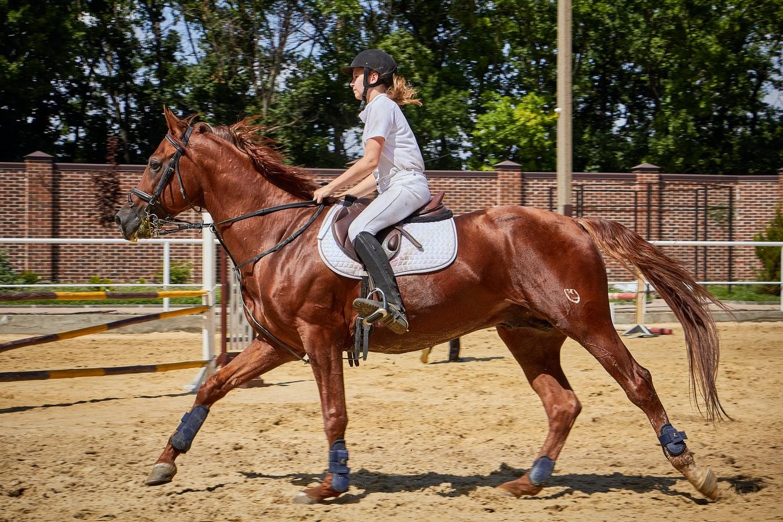 Jaki Strój jeździecki dla kobiet